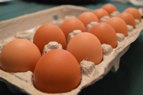 carton of 12 eggs